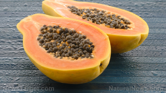 Image: A compound produced by bacteria in papayas shows promise as a powerful antibacterial agent