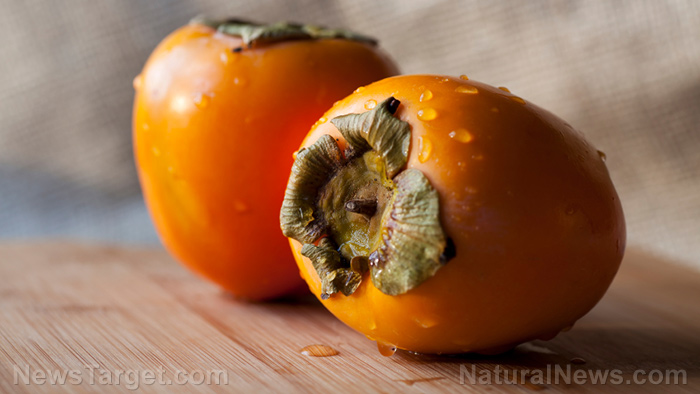 Image: Scientists find the Japanese persimmon shows potential in treating colorectal cancer