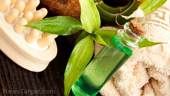 Image: How to make your own natural tea tree massage oil