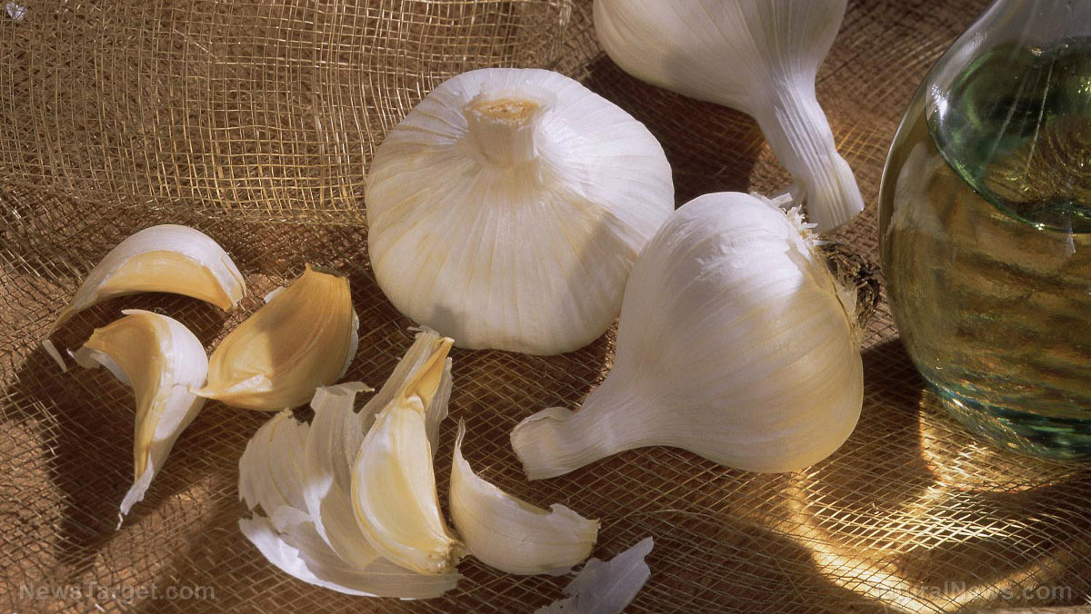 Image: Food cures: A guide to making your own garlic tincture