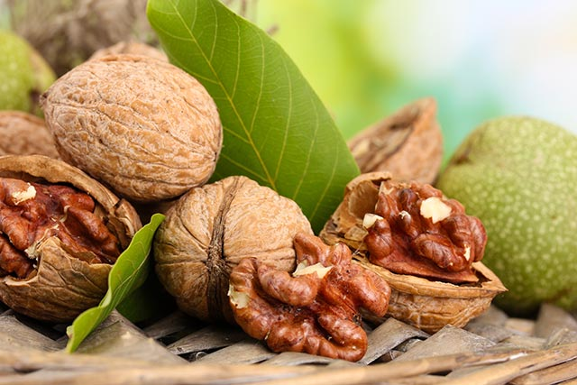 Image: Natural remedies: Males with fertility problems may find help in the walnut leaf