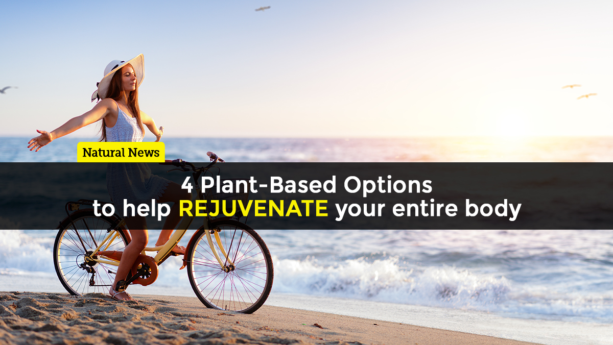 Image: Four plant-based options to help rejuvenate your entire body
