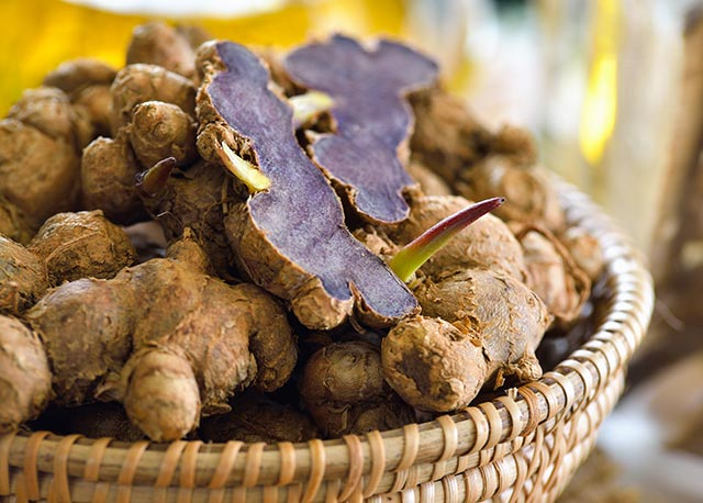 Image: Study: Obese people who supplement with Thai black ginger are less likely to develop a skin disorder
