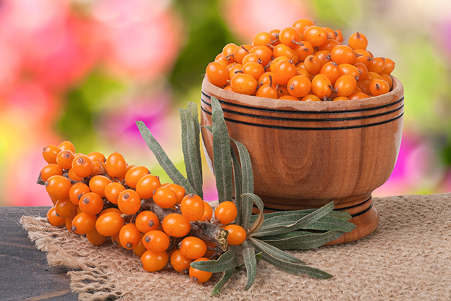 Image: Sea buckthorn protects your heart, offers antioxidant health benefits