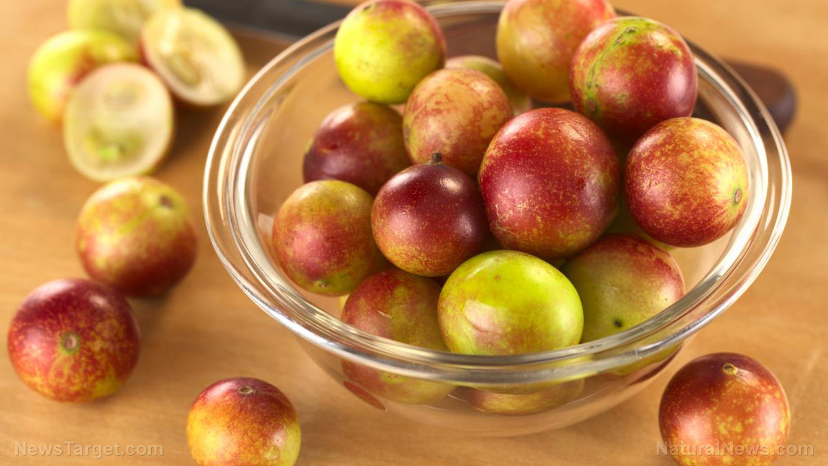 "Image: Get a vitamin C boost with the ""power fruit"" camu camu"