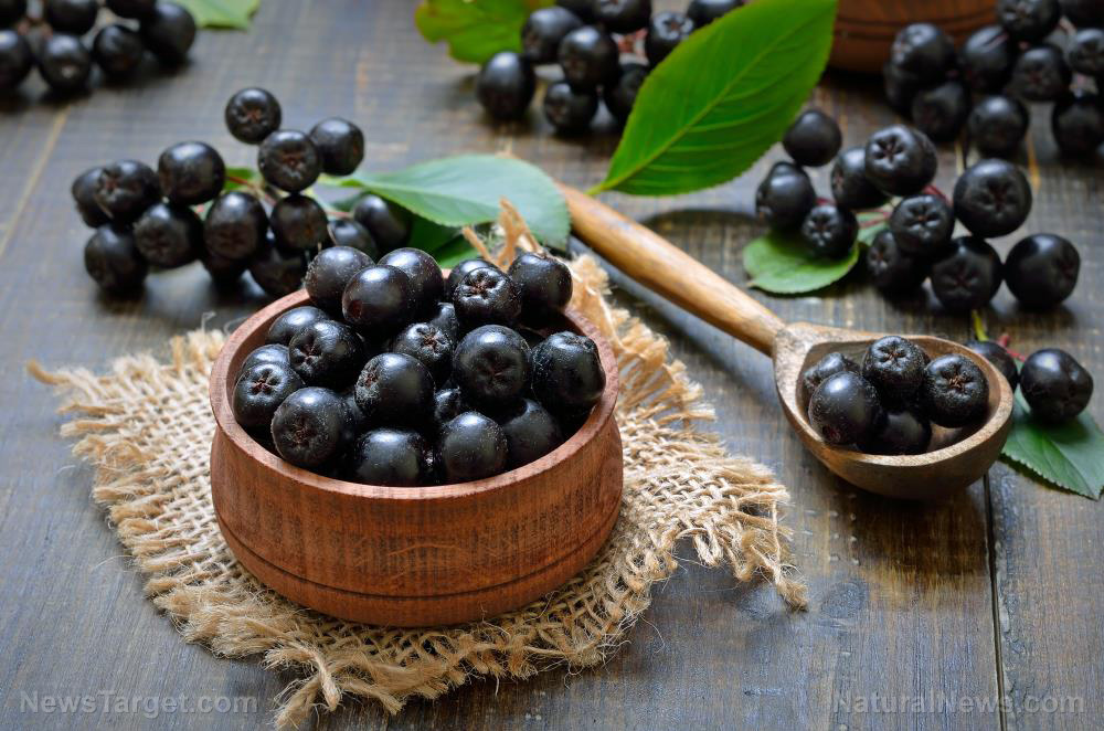 Image: Medicinal food: Aronia berry found to have an anti-diabetic effect