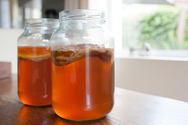 Image: Drink your way back to health: Ginger-based kombucha found to treat breast cancer