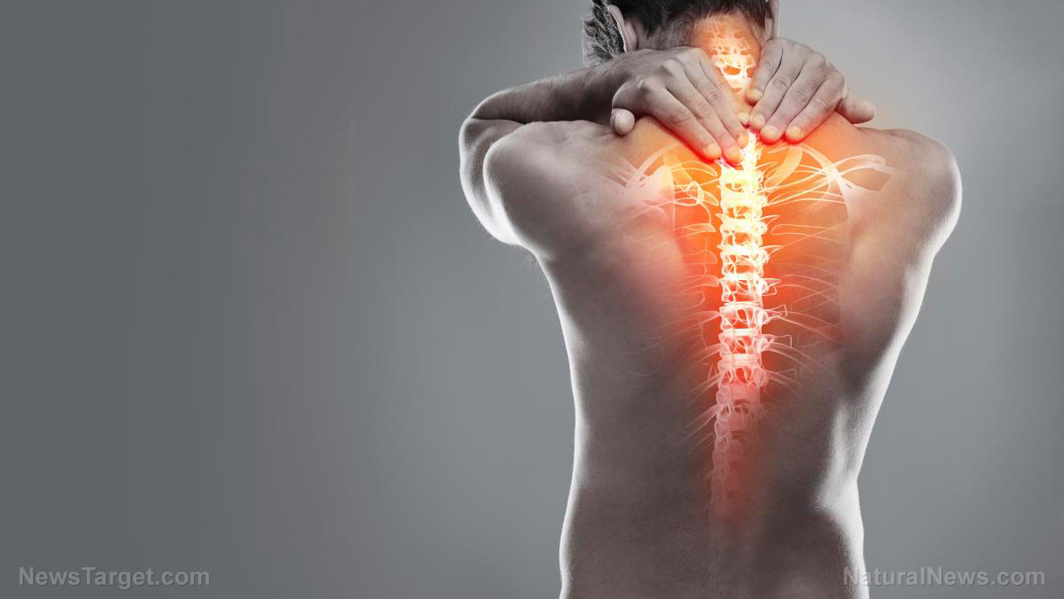 Image: Here are some of the most common causes of backaches and effective ways to avoid them