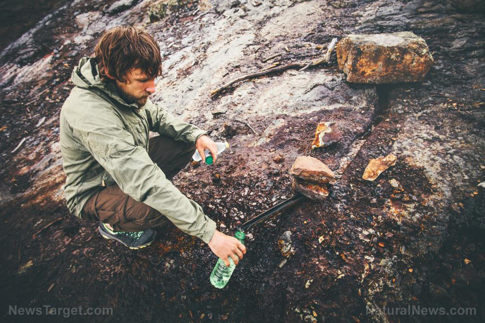 Image: A survivalist's guide to water: How to source it in the wild, how much you need, and how to prevent dehydration