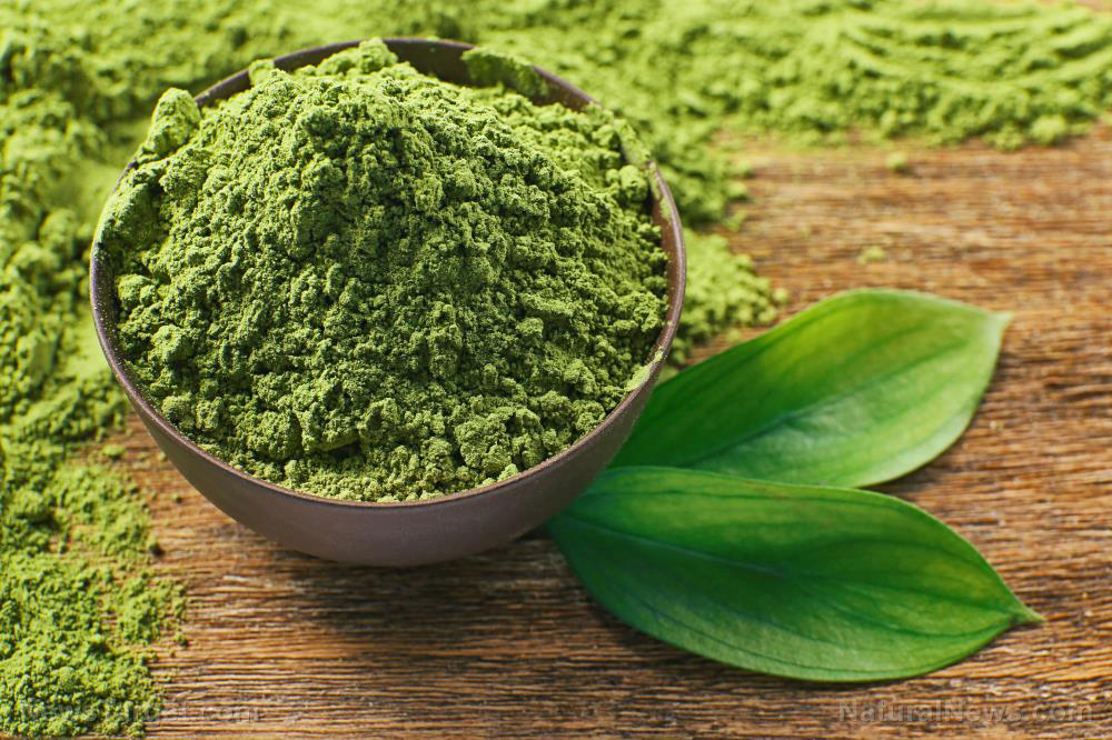 Image: Natural matcha green tea extract found to effectively kill breast cancer cells