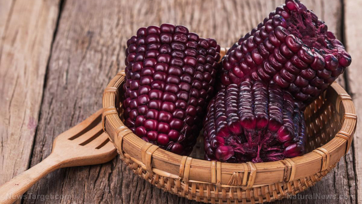 Image: Researchers say that purple corn is a natural aphrodisiac