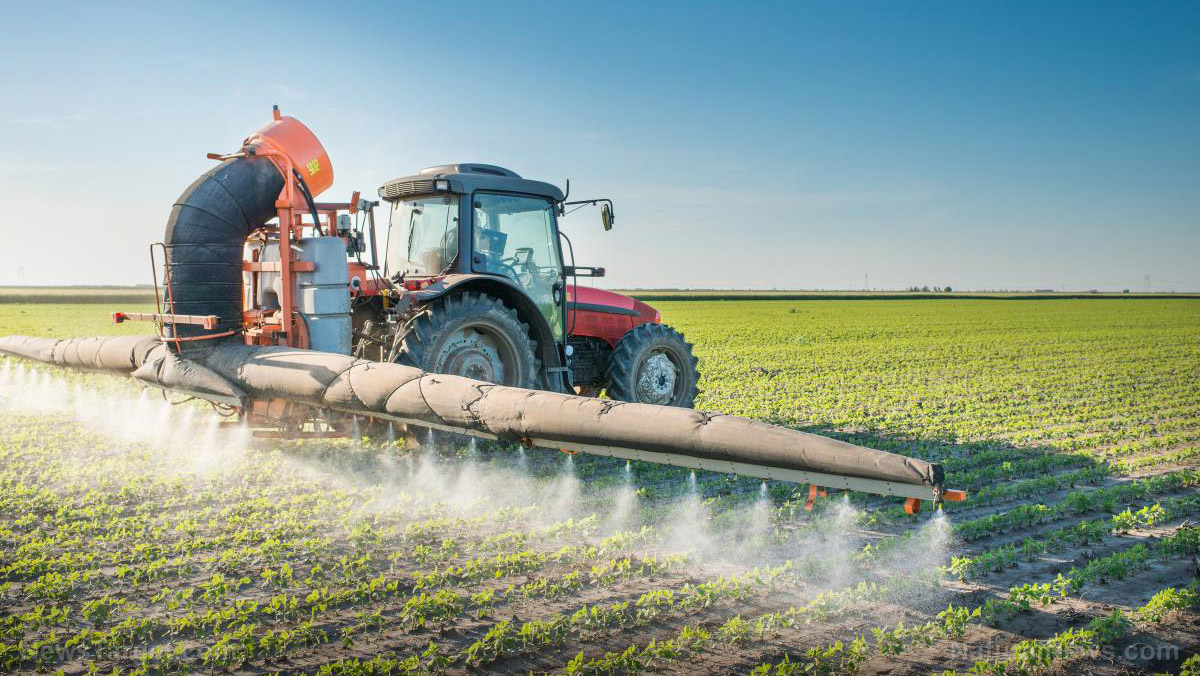 Image: Court upholds Arkansas decision to ban dicamba herbicide