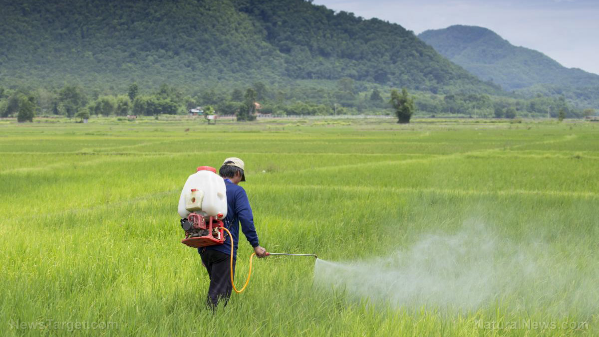 Image: Organic family farm ruined by herbicide drift: A case study (and warning for humanity)