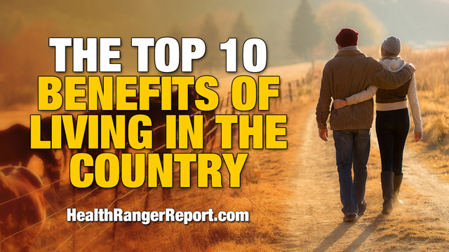 Image: The top 10 benefits of living in the country