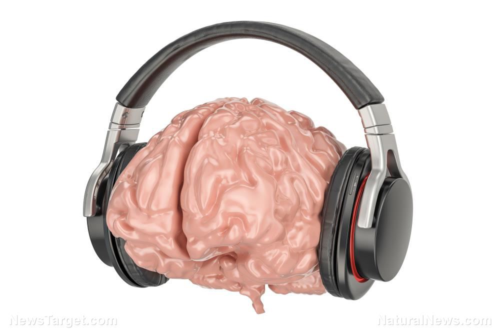 Image: Active music therapy increases brain activation