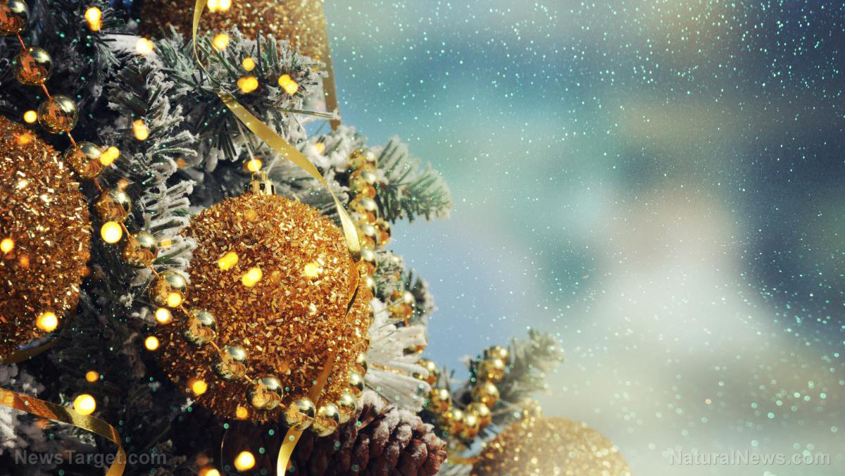 Image: Merry Christmas from Natural News and the Health Ranger