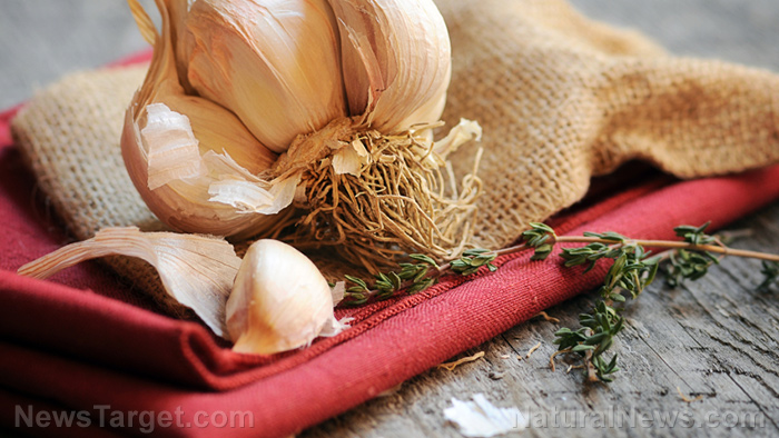 Image: Aged garlic extract reduces low-grade inflammation in obese people