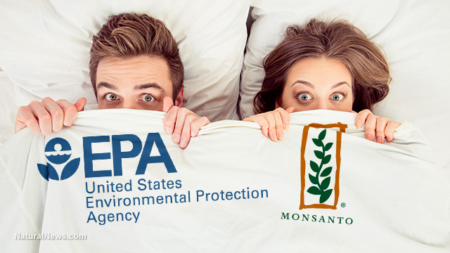 Image: EPA in bed with Monsanto / Bayer, burying studies that show glyphosate causes cancer