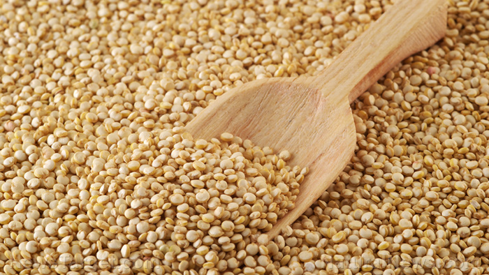 Image: Follow these tips to ensure the proper long-term storage of grains