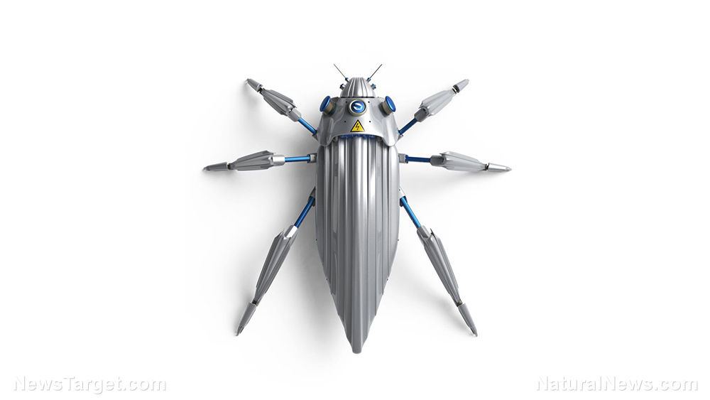 Image: Future weapons: DARPA seeking innovative designs for insect-sized robots to compete in a series of tactical competitions