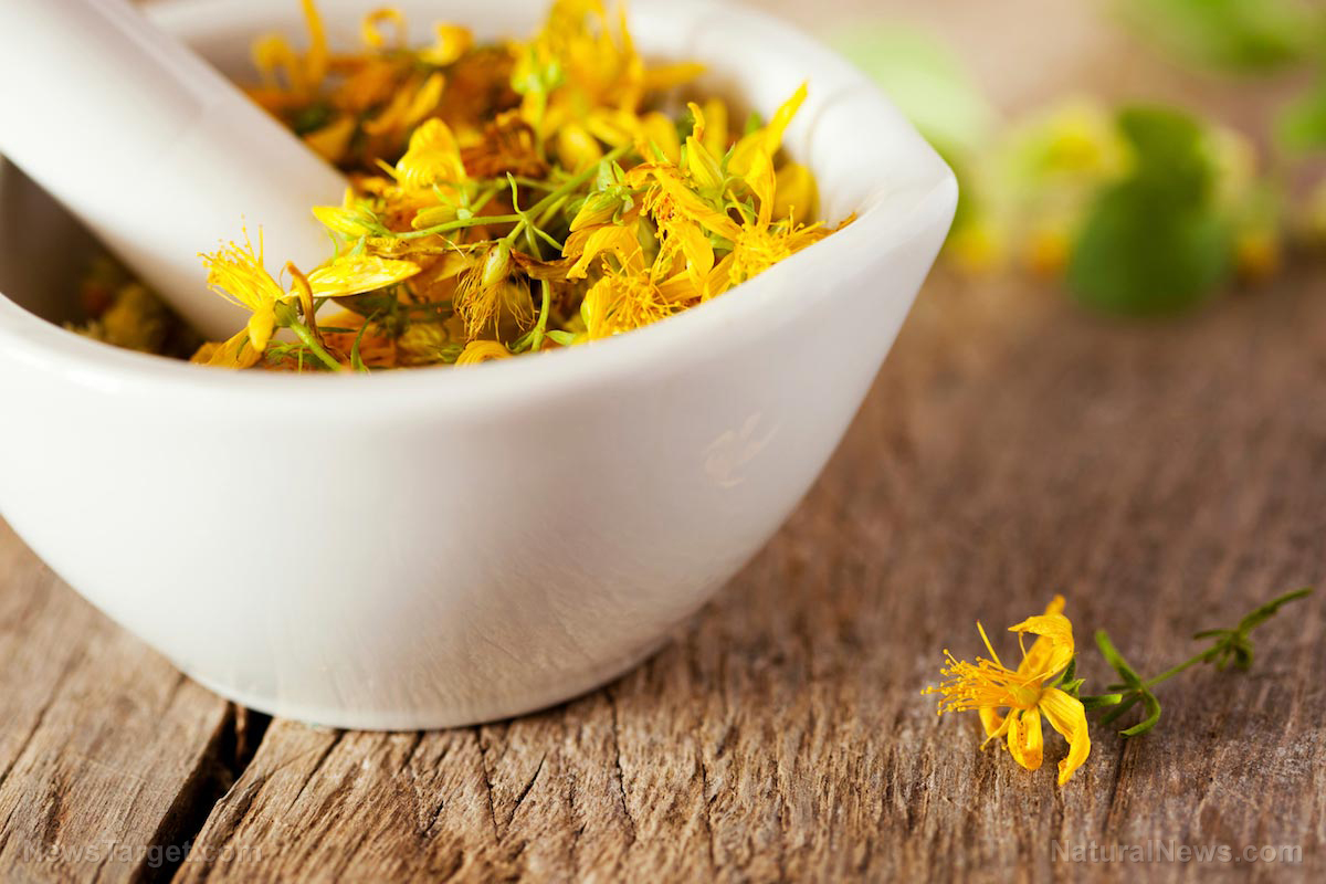 Image: Everything you need to know about using St. John's wort for depression