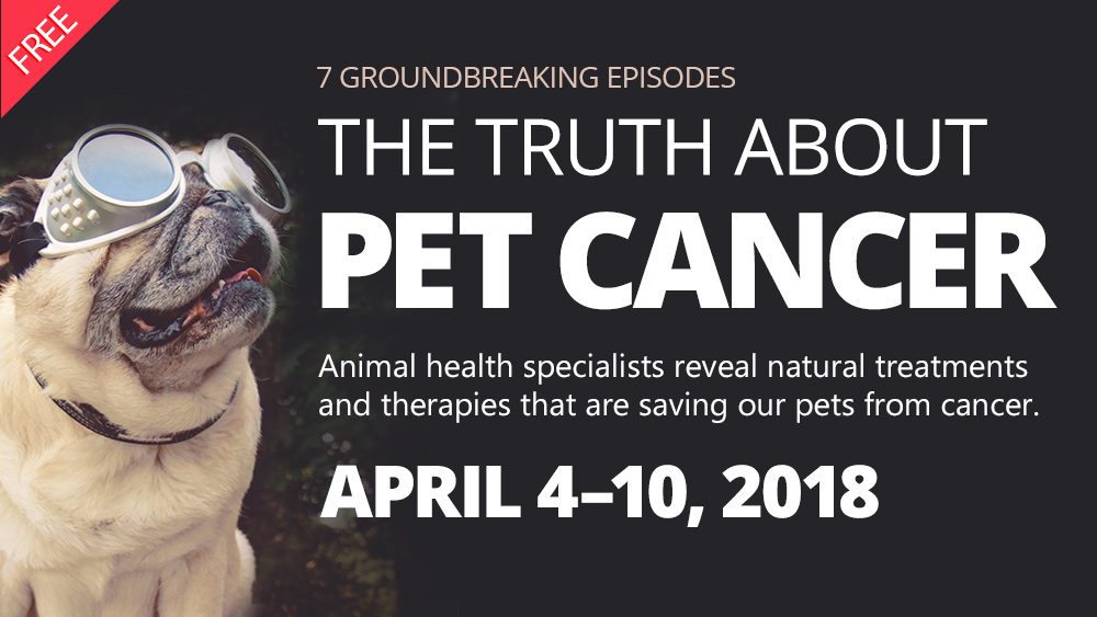 Image: The lifesaving Pet Cancer docu-series begins in two days… see all episodes here
