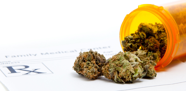Image: More proof that cannabis is an anti-aging powerhouse: THC found to rapidly restore memory performance of older mice