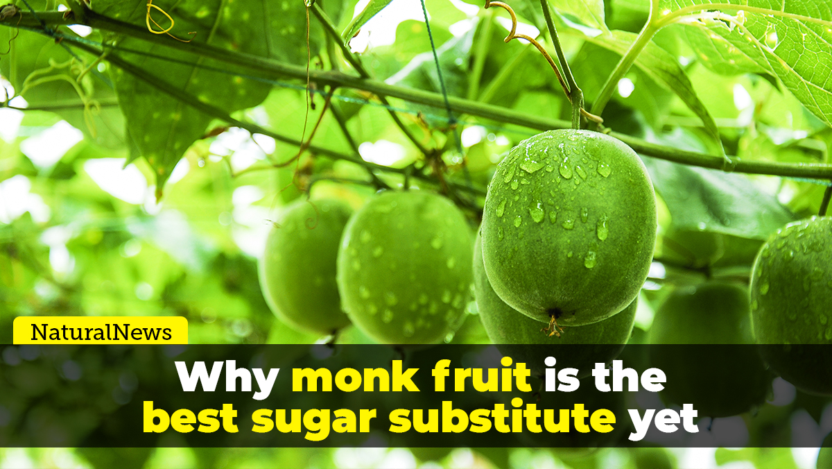 Image: Why monk fruit is the best sugar substitute yet discovered