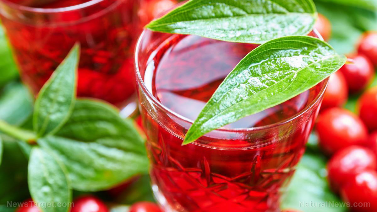 Image: Drink cranberry juice to decrease your risk of UTI by half