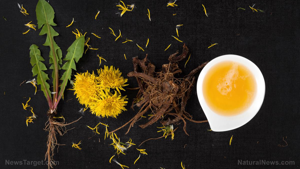 Image: Dandelion root detoxifies your liver and fights cancer