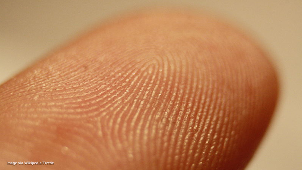 Image: Revolutionary drug test can detect 4 classes of drugs from the sweat in your fingerprints — even when you're dead