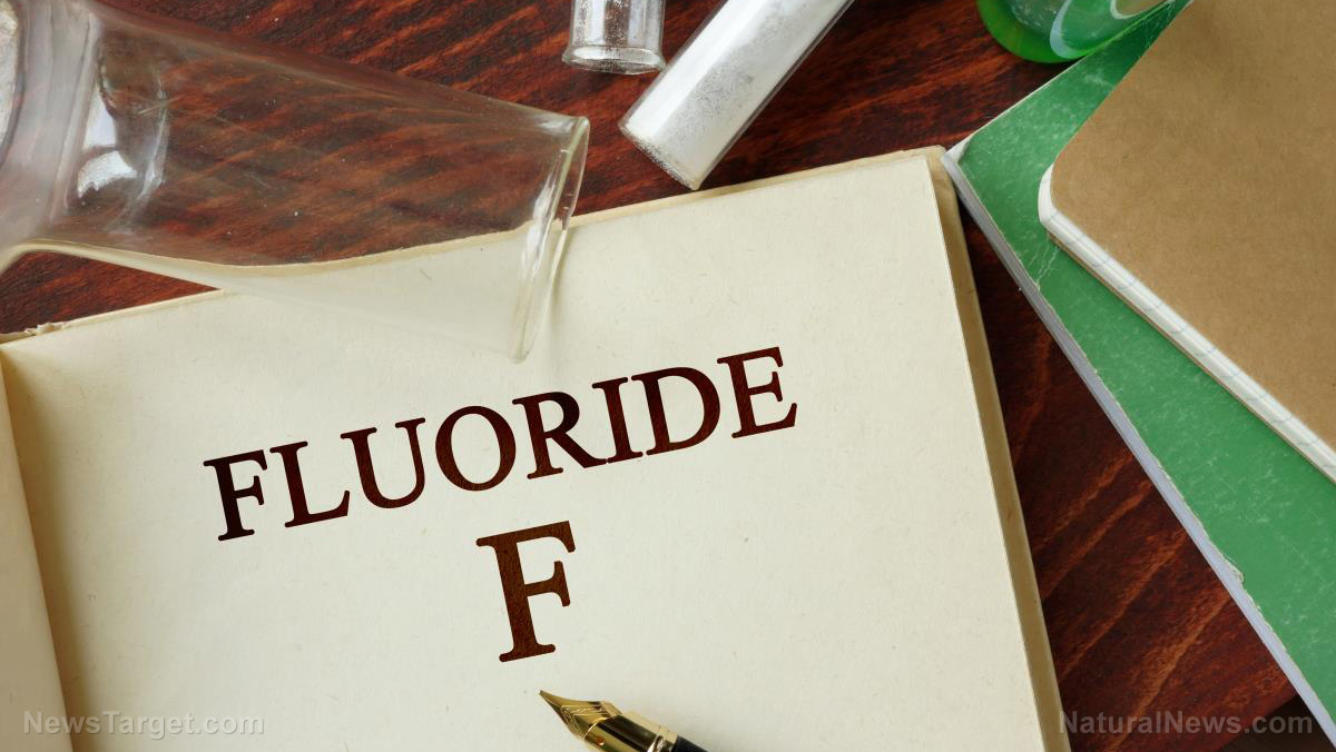 Image: Here's another dangerous effect of fluoride: It literally turns the pineal gland to stone