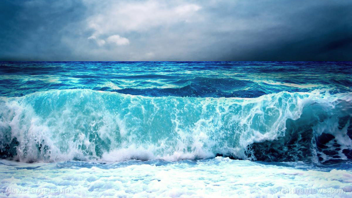 Image: Researchers discover ways to obtain energy from marine currents more efficiently