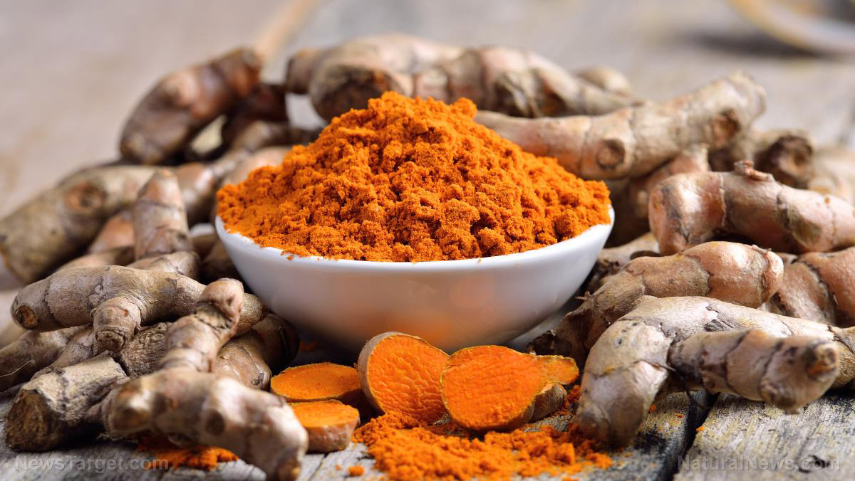 Image: Curcumin found to aid in the healing of skin wounds