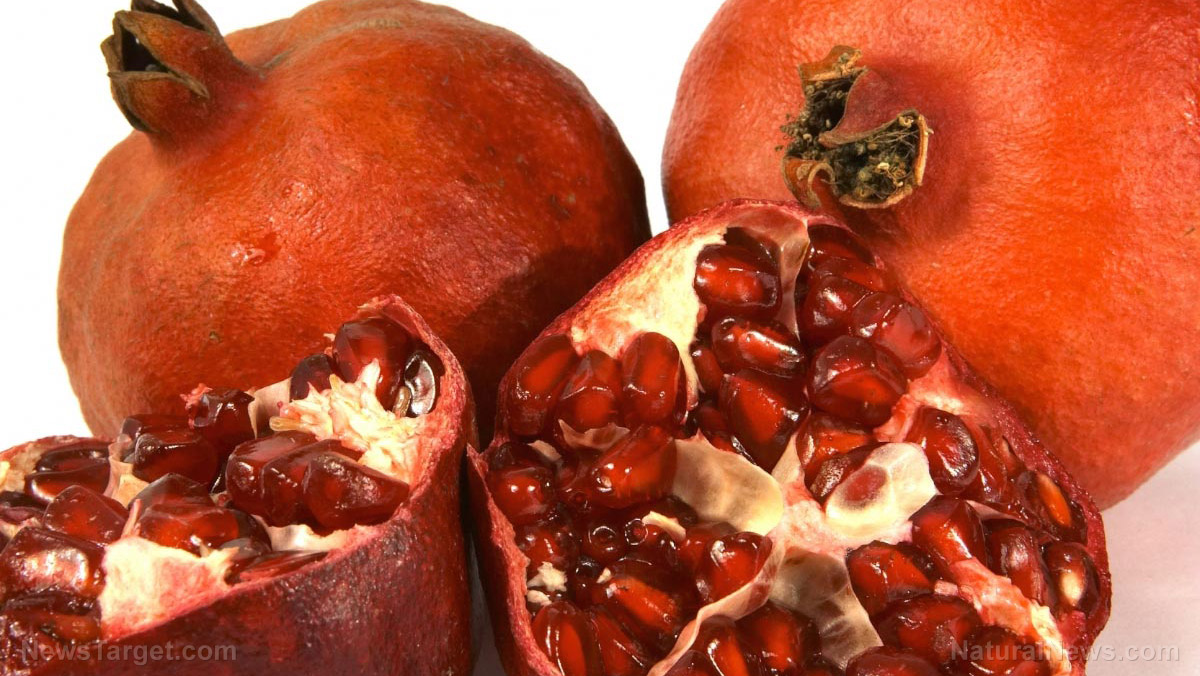 Image: The potential therapeutic uses of pomegranate seed oil