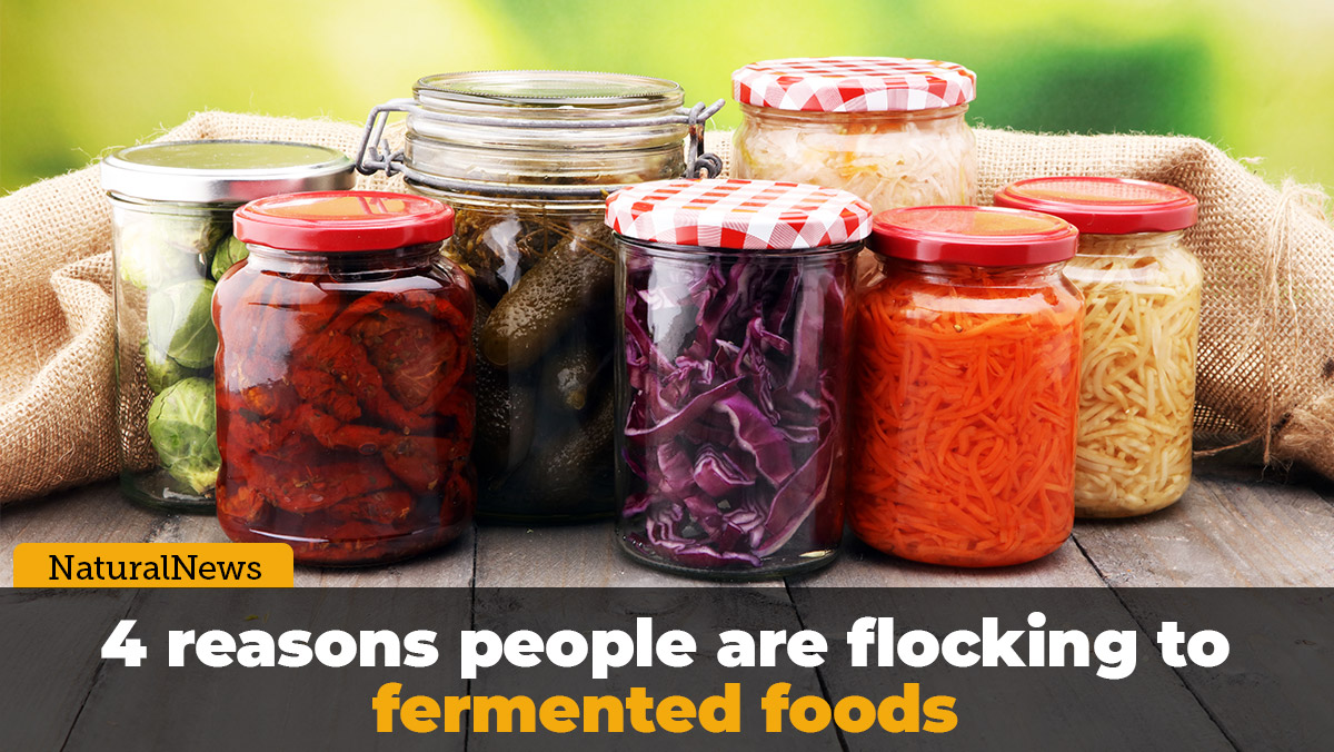 Image: 4 reasons people are flocking to fermented foods