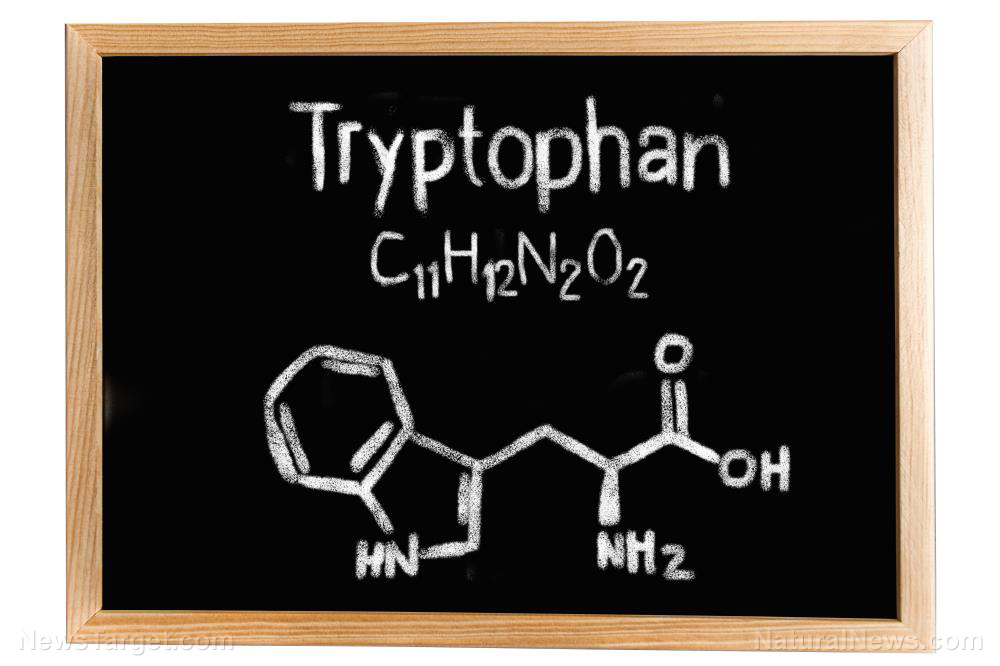 Image: Tryptophan found to be necessary for better mental health