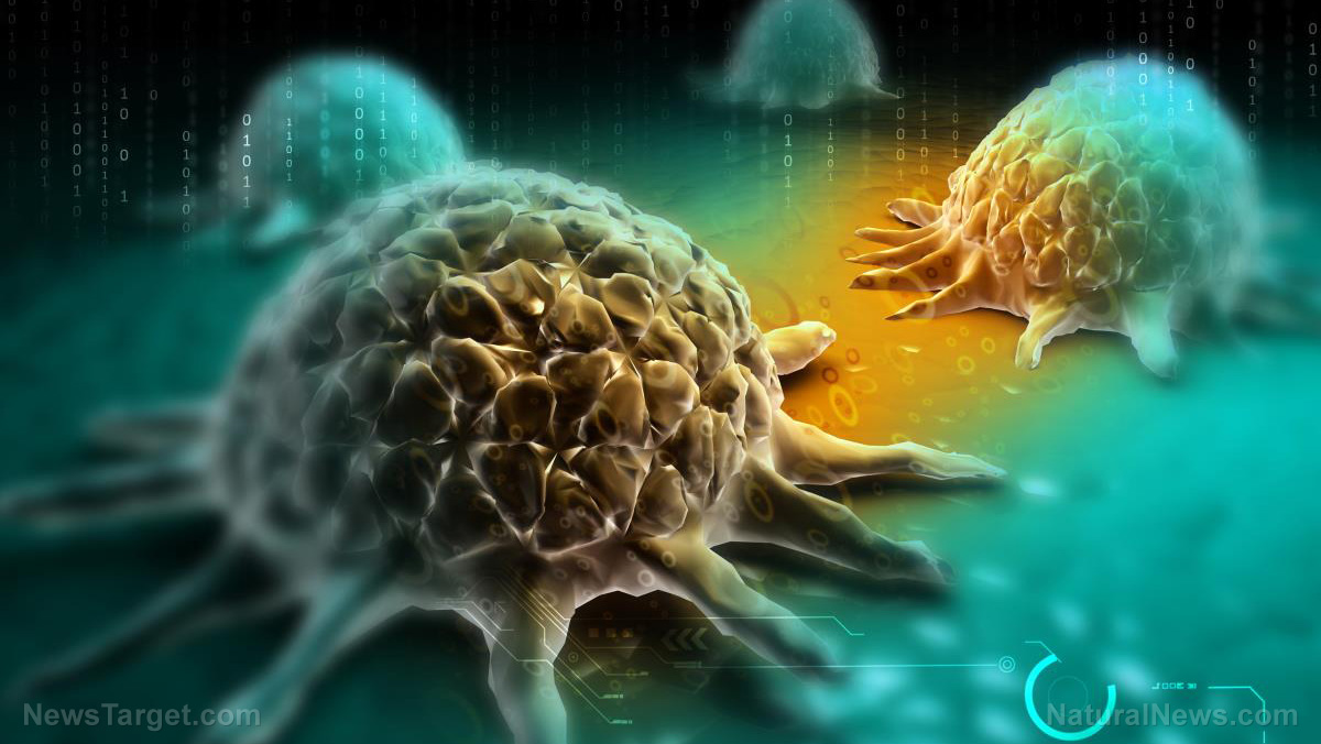 Image: New experimental cancer cure helping some patients when chemotherapy fails