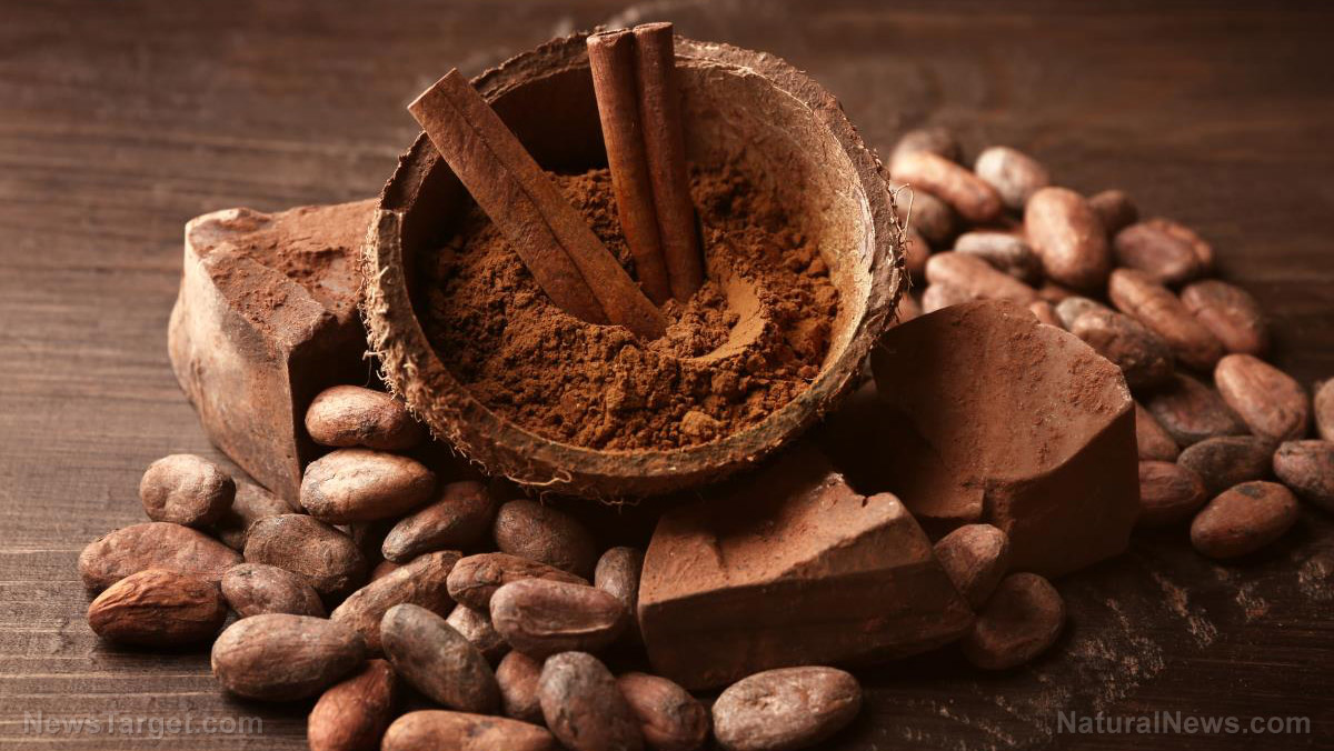 Image: Cocoa has profound healing properties, beating even acai and blueberries