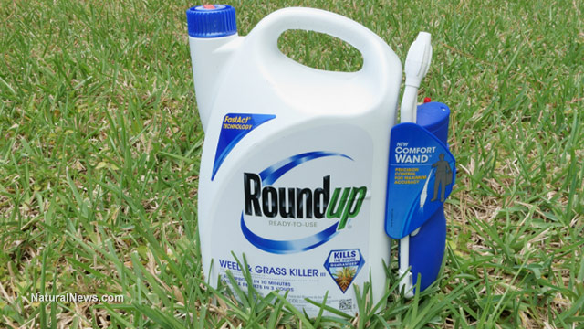 Image: Roundup weedkiller more toxic than just glyphosate alone… alarming new findings reveal NON-active ingredients are poisons, too