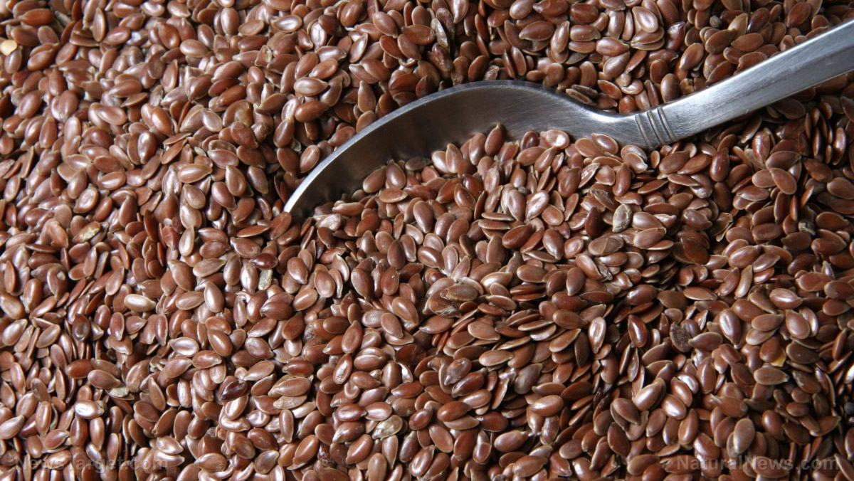 Image: Flax for burns: Study reveals oil from flaxseed reduces inflammation and speeds healing in burn wounds