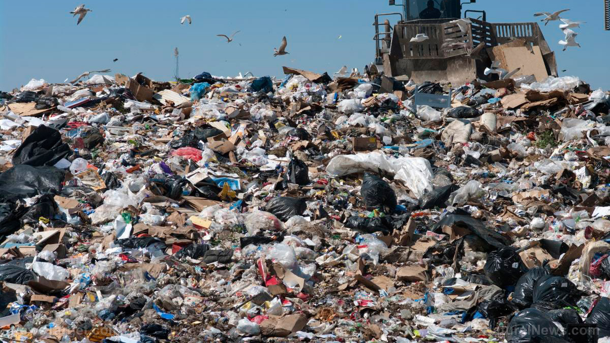 Image: Landfills seen as potential source of raw materials in the future