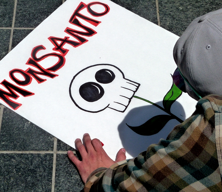 Image: Seeds of deception: Monsanto's patented GMO seeds have given them power over life on our planet, and cultivated farmer suicides