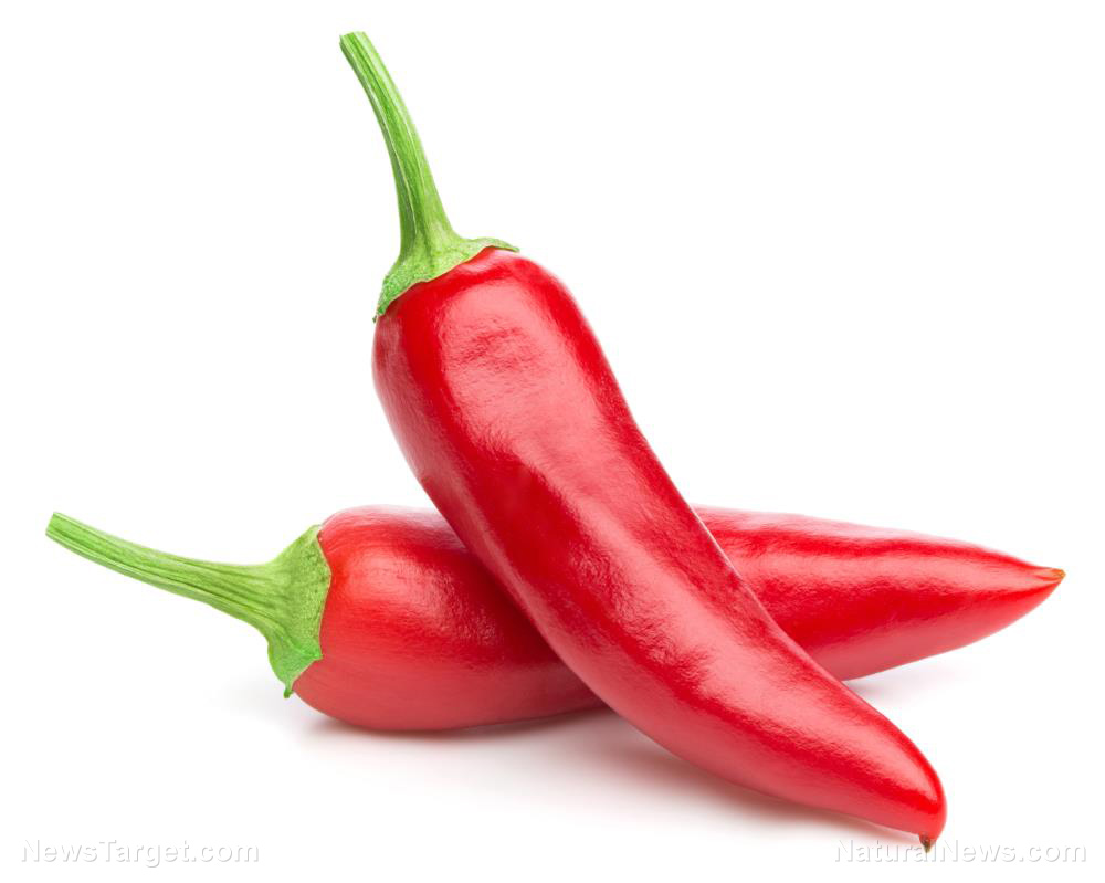 Image: Cayenne peppers are medicinal powerhouses that deserve a spot in your emergency medical kit