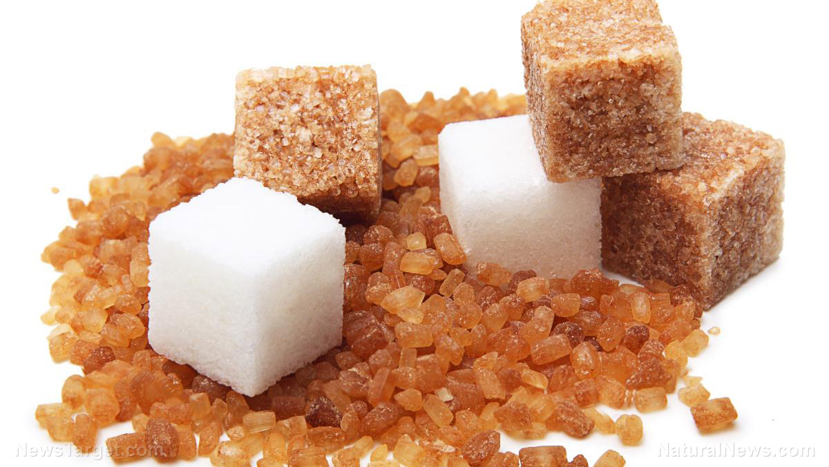 Image: Sugar amplifies the effects of an anticancer compound used in Traditional Chinese Medicine
