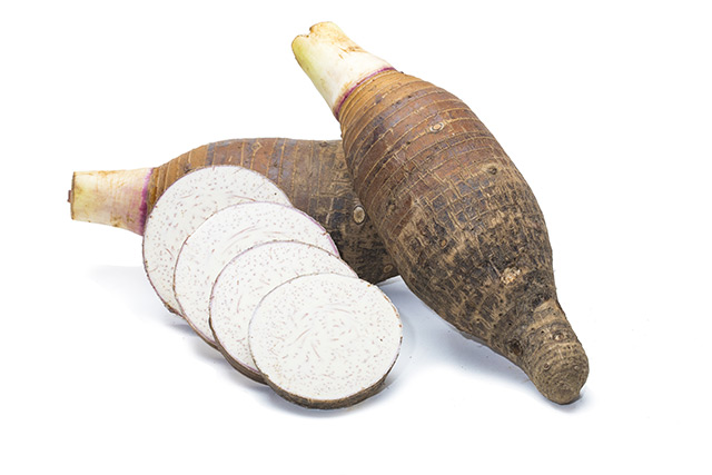 Image: Taro leaves, also known as elephant ears, can be used as prebiotics for animals when pre-treated with enzymes