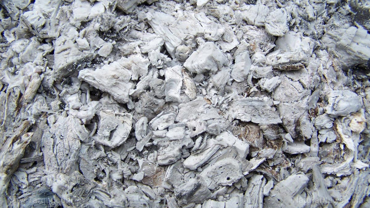 Image: Natural soil amendments: Wood ash and crushed rock effectively increase nitrogen bioavailability in soil, acting as a non-chemical fertilizer