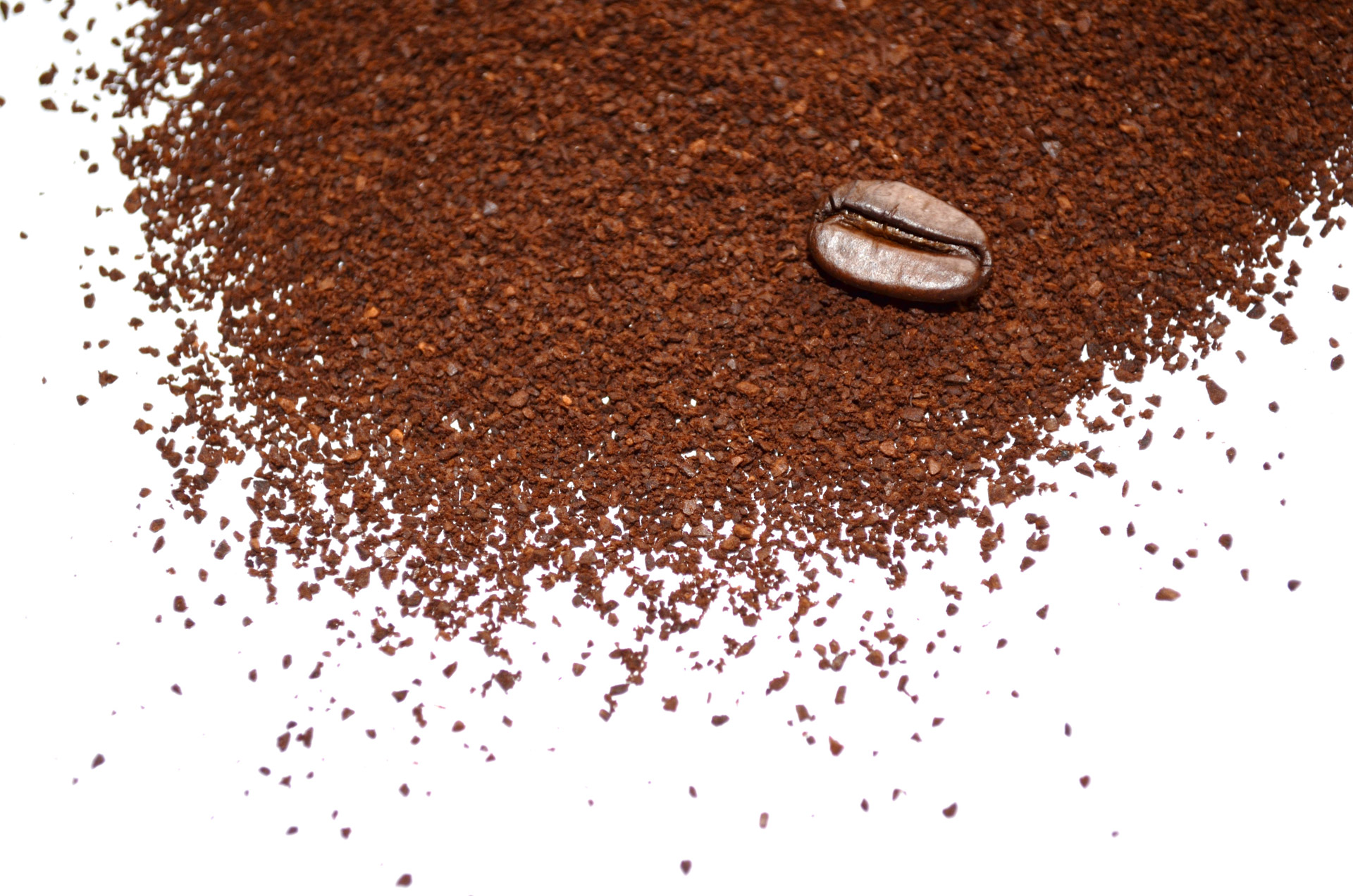 Image: Functional recycling: Spent coffee grounds can make soil more fertile