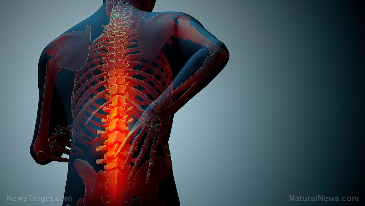 Image: Study: Spinal manipulation benefits 63% of lower-back pain sufferers after 6 weeks