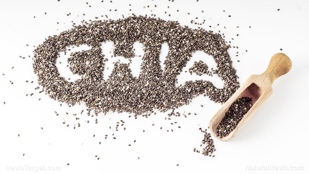 Image: 7 ways chia seeds boost your health